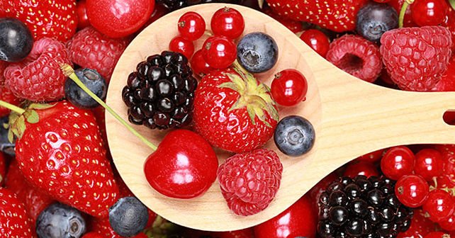 blog nutricao joyce frutas flavonoides memoria cognicao 3