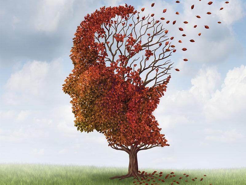 diabetes-tipo-2-nutricao joyce perda de memoria 2
