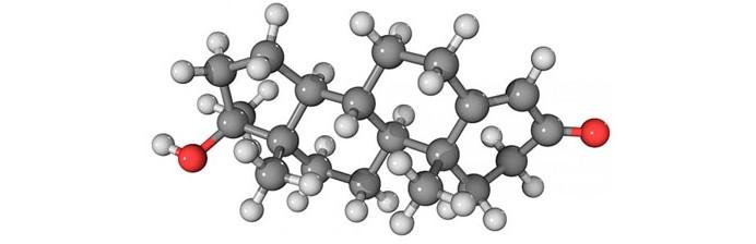 nutricao joyce como aumentar os niveis de testosterona 2
