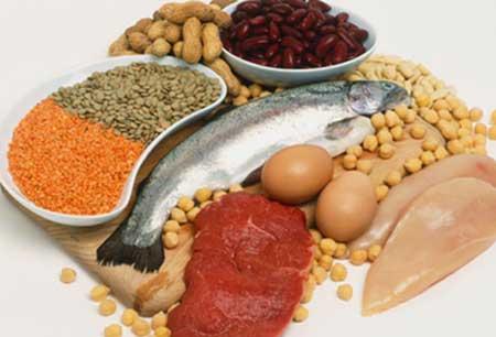 nutricao joyce dieta hiperproteica atkins dukan 1