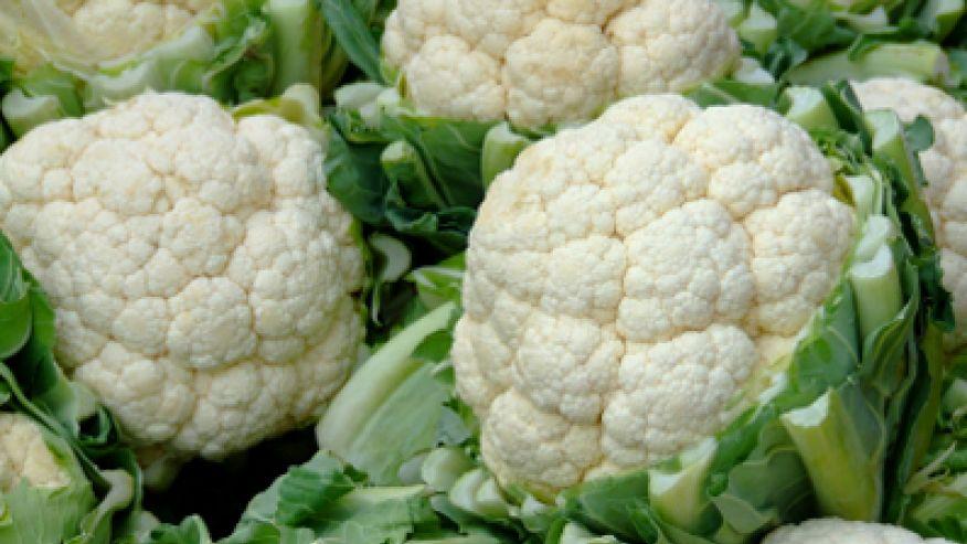 beneficios dos vegetais brancos nutricao joyce nutricionista sp 2