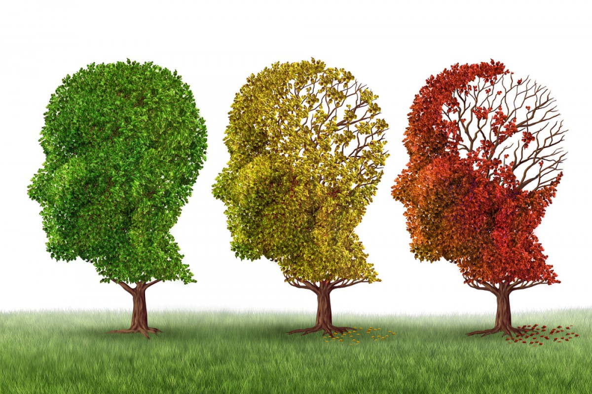Alzheimer e a falta de vitamina d