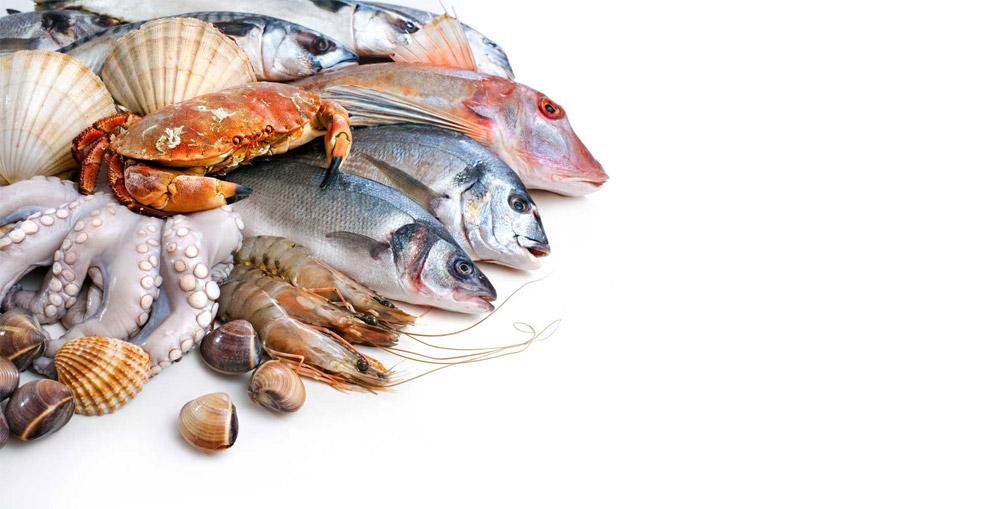 frutos-do-mar-podem-diminuir-risco-de-alzheimer-nutricionista-em-sao-paulo